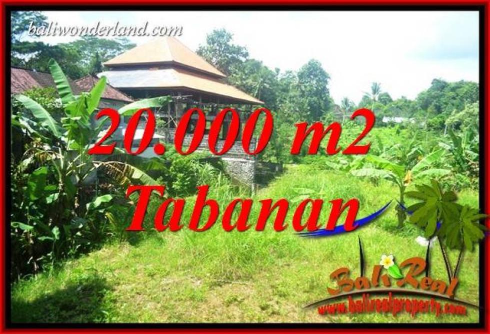 Beautiful 20,000 m2 Land in Tabanan Kota for sale TJTB418