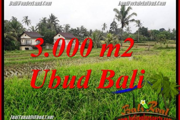 Ubud Tegalalang Bali Land for sale TJUB698