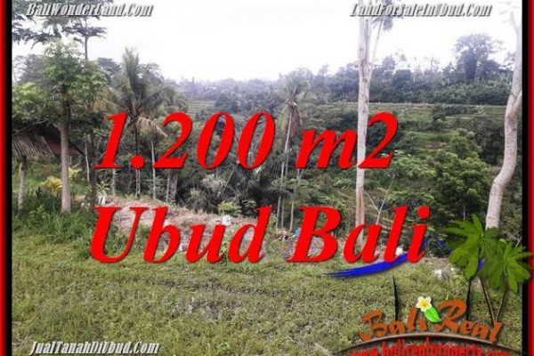 Exotic Land sale in Ubud BALI TJUB699