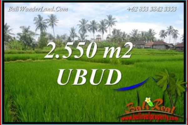 Beautiful Land for sale in Ubud Bali TJUB700