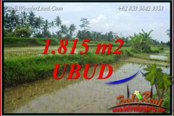 FOR sale Magnificent 1,815 m2 Land in Ubud Bali TJUB703