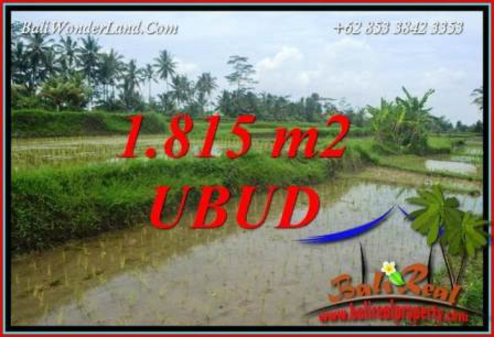 FOR sale Magnificent 1,815 m2 Land in Ubud Bali TJUB703