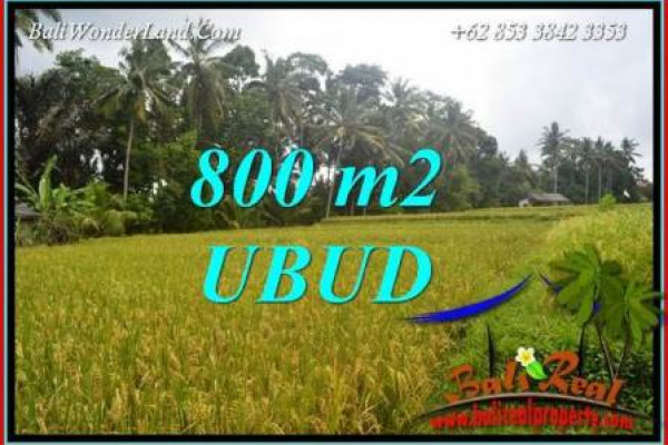 Magnificent 800 m2 Land for sale in Sentral Ubud Bali TJUB707