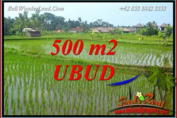 Exotic Property Land sale in Ubud Bali TJUB708