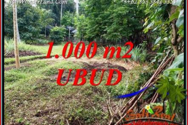 Beautiful Land sale in Ubud Bali TJUB712