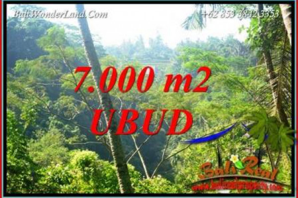 Beautiful Ubud Bali Land for sale TJUB714
