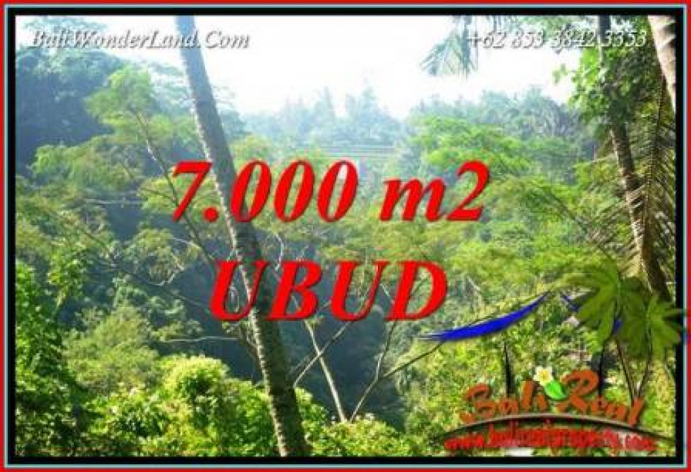 Affordable Property Ubud Tegalalang Bali 7,000 m2 Land for sale TJUB714