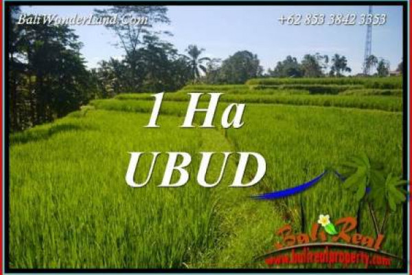 Land in Ubud Bali for sale TJUB715