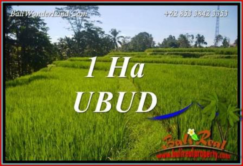 Land in Ubud Bali for sale TJUB715