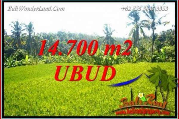 FOR sale Exotic 14,700 m2 Land in Ubud Bali TJUB717