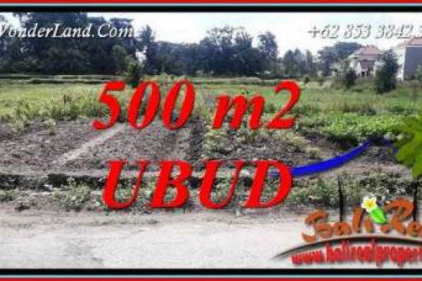 Magnificent Land sale in Ubud Bali TJUB720