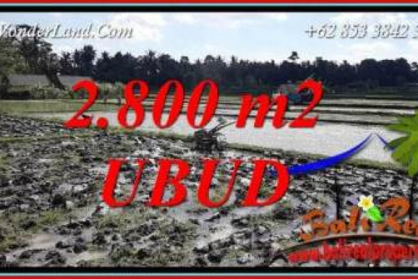Exotic Ubud Bali 2,800 m2 Land for sale TJUB722