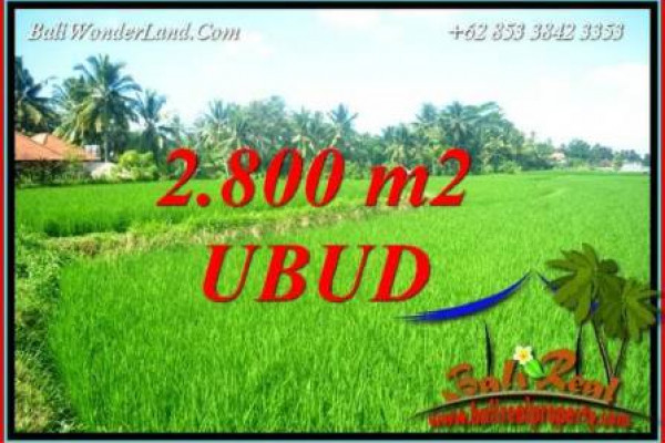 Exotic Property 2,800 m2 Land for sale in Sentral Ubud Bali TJUB726