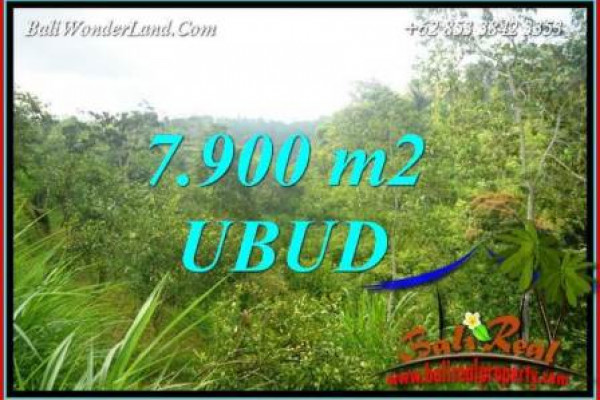 Beautiful 7,900 m2 Land sale in Ubud Bali TJUB729
