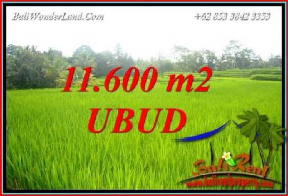 FOR sale Exotic 11,600 m2 Land in Ubud Bali TJUB732