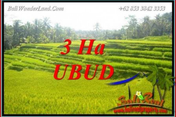 Exotic Land sale in Ubud Bali TJUB733