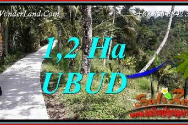 Land for sale in Ubud Bali TJUB740