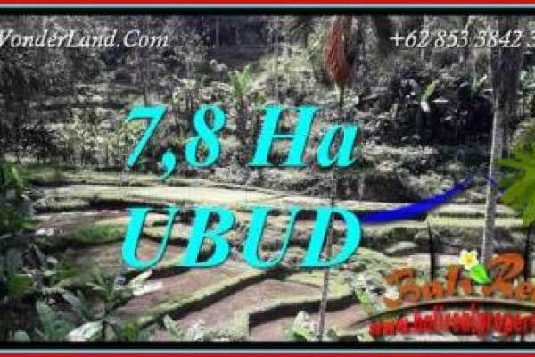 Affordable Property Ubud Payangan Bali 78,000 m2 Land for sale TJUB741