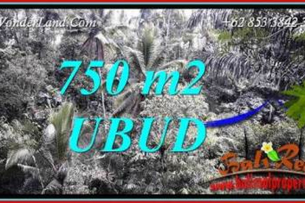 Magnificent 750 m2 Land in Ubud Tampak Siring Bali for sale TJUB742