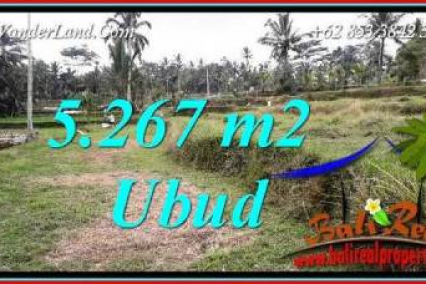 Affordable Property Land sale in Ubud Bali TJUB743