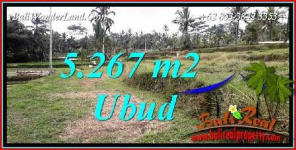 FOR sale Magnificent Property 5,267 m2 Land in Ubud Tegalalang Bali TJUB743