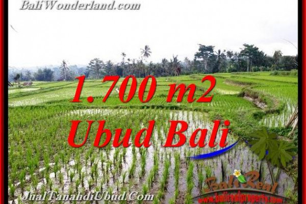 Magnificent LAND FOR SALE IN UBUD TJUB770