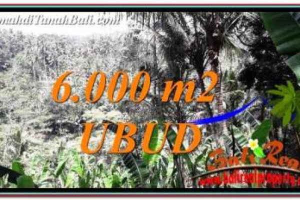 Magnificent 6,000 m2 LAND IN Ubud Payangan FOR SALE TJUB750