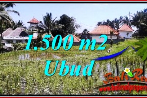 Affordable LAND IN UBUD FOR SALE TJUB744