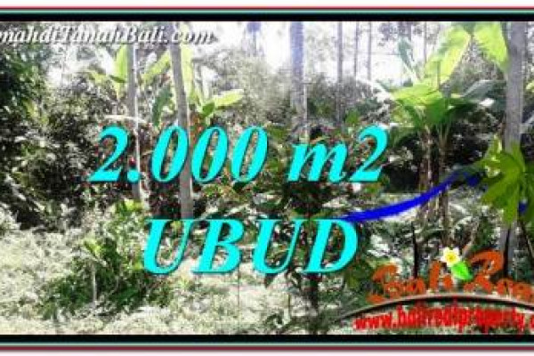 FOR SALE Affordable LAND IN Ubud Tegalalang BALI TJUB747