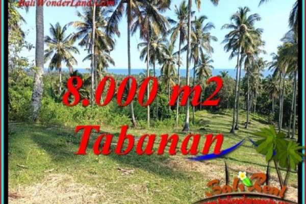 Magnificent PROPERTY 8,000 m2 LAND IN TABANAN FOR SALE TJTB488