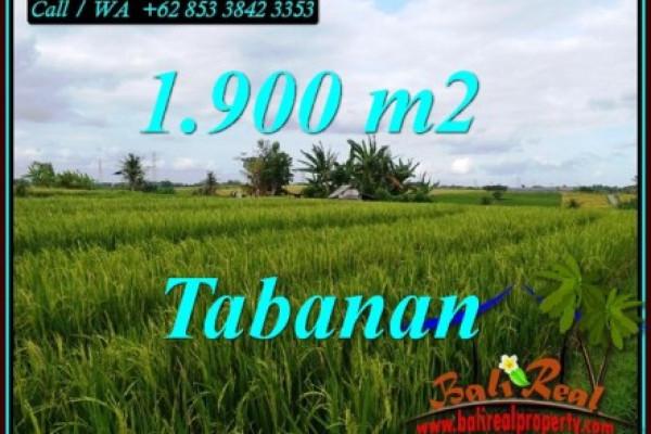 Magnificent 1,900 m2 LAND SALE IN SELEMADEG TABANAN BALI TJTB495