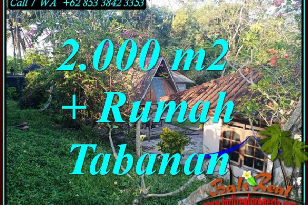 Affordable PROPERTY 2,000 m2 LAND SALE IN SELEMADEG TABANAN BALI TJTB455