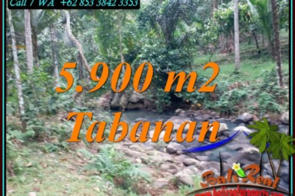 FOR SALE 5,900 m2 LAND IN SELEMADEG TABANAN TJTB458