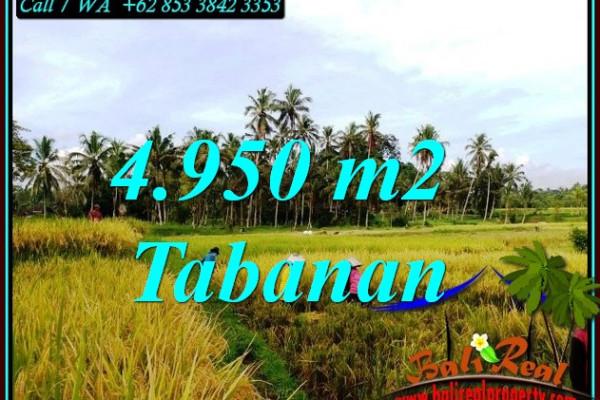 FOR SALE Exotic 4,950 m2 LAND IN MARGA TABANAN BALI TJTB464