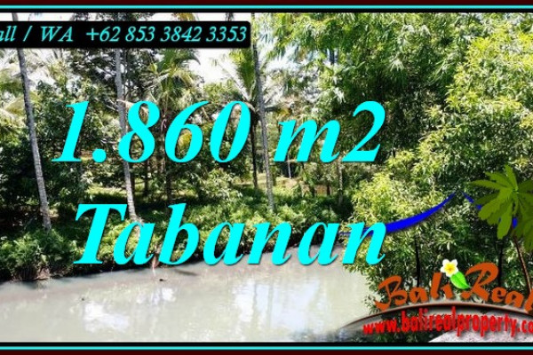 Affordable 1,860 m2 LAND FOR SALE IN SELEMADEG BALI TJTB467