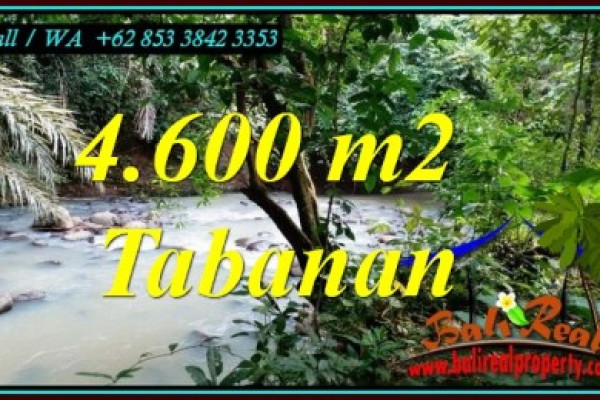 Cheap property 4,600 m2 LAND FOR SALE IN TABANAN TJTB473