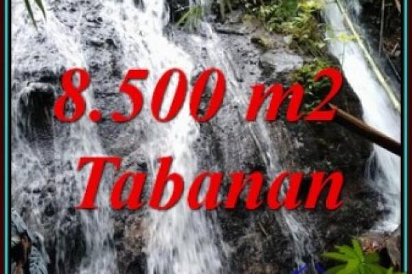 Beautiful PROPERTY LAND SALE IN SELEMADEG TJTB478