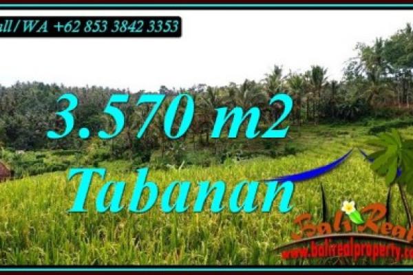 Affordable LAND IN TABANAN BALI FOR SALE TJTB482