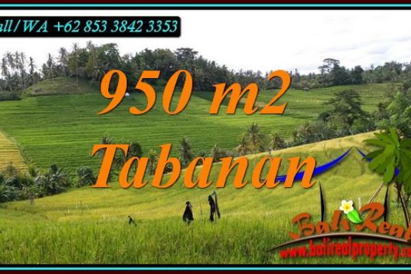Exotic PROPERTY LAND FOR SALE IN SELEMADEG TIMUR BALI TJTB483