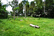 LAND FOR SALE IN UBUD, 1 Ha with stunning view in Tegalalang – TJUB035