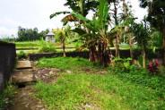 Land in Ubud, 12 ares on Suweta Street – TJUB048