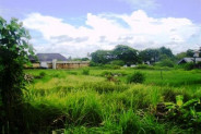 Land for sale in Canggu, 10 minutes from the Beach – TJCG027