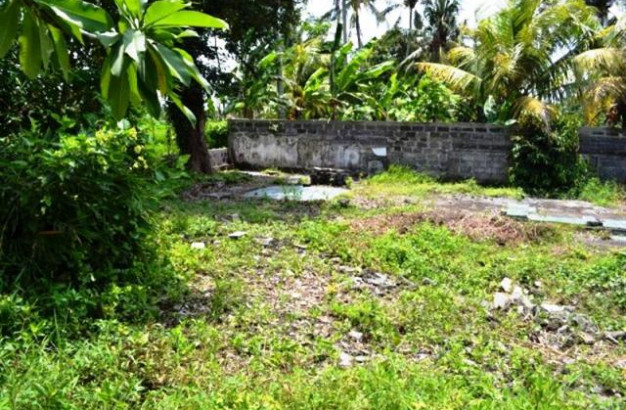 Land for sale in Ubud river view rice field – TJUB016