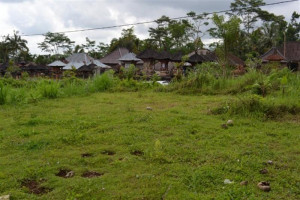 Land for sale in Ubud with nice view to river valley – TJUB004