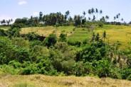 land for sale in Gianyar at Sukawati – TJGN006
