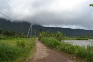 land for sale in Bedugul mountain and lake view – TJBE016