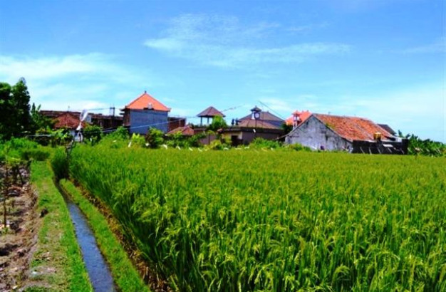 2275 sqm land for sale in Canggu – kayu tulang  -TJCG004