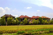 roadside land for sale in canggu with rice field view – TJCG038
