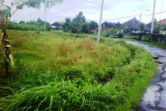 land for sale in Canggu 9000 sqm nice for villa – TJCG044