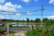 roadside land for sale in canggu – TJCG049